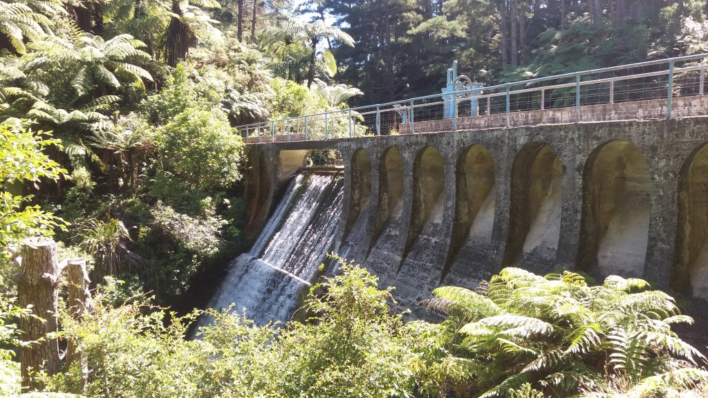 Waitahinga Dam Walk Review
